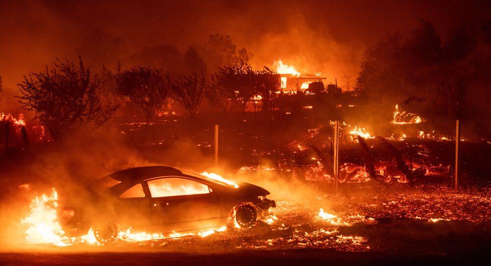 ABD'nin Kaliforniya eyaletinde yangın