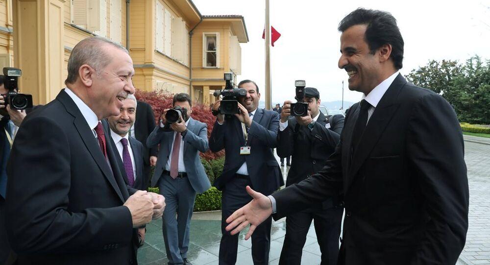 Türkiye Cumhurbaşkanı Recep Tayyip Erdoğan, Katar Emiri Şeyh Temim bin Hamed Al Sani