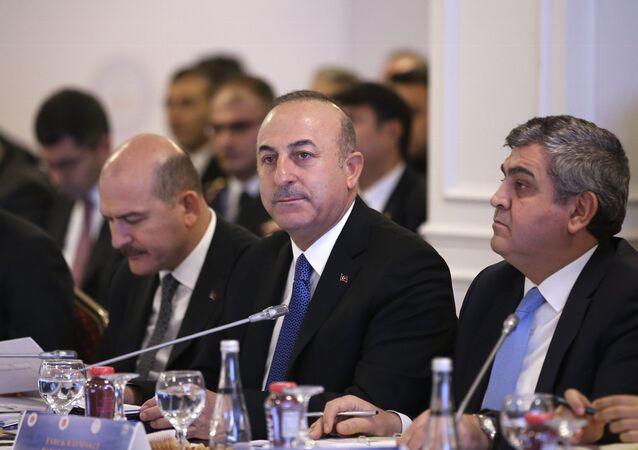 Dışişleri Bakanı Çavuşoğlu - Reform Eylem Grubu'nun 5. Toplantısı