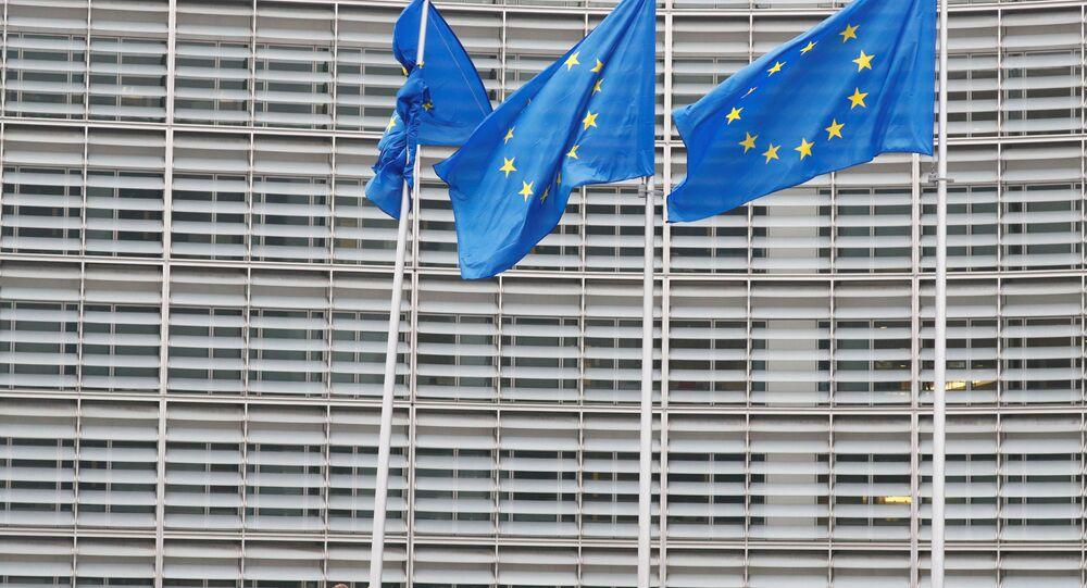 Brüksel'deki göçmen karşıtı protestocular Avrupa Komisyonu önünde AB bayraklarını indirmeye ve binanın içine baskın düzenlemeye çalıştı.