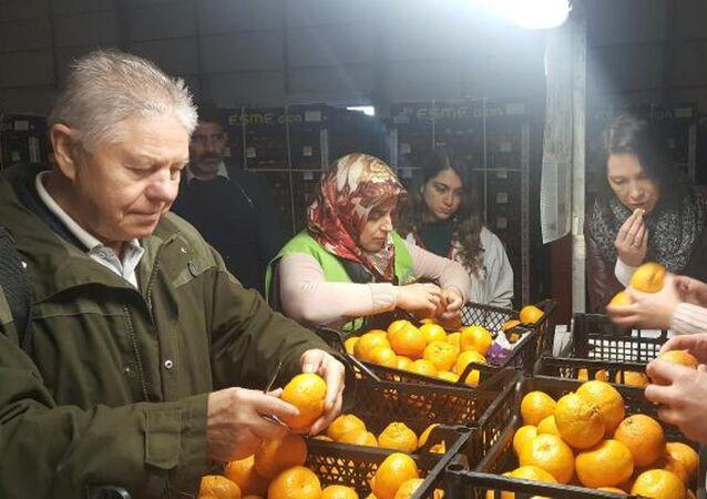 Rus Gıda Denetim Ajansı