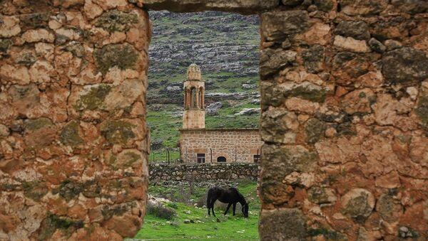 Mardin'in Savur İlçesi'ne bağlı Dereiçi (Kıllıt) Köyünde bir at - Sputnik Türkiye