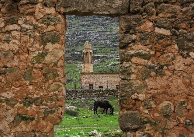 Mardin'in Savur İlçesi'ne bağlı Dereiçi (Kıllıt) Köyünde bir at