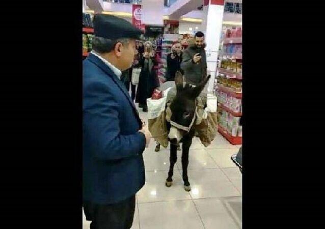 Halil Gün, market, eşek