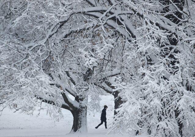 Kar- Kış