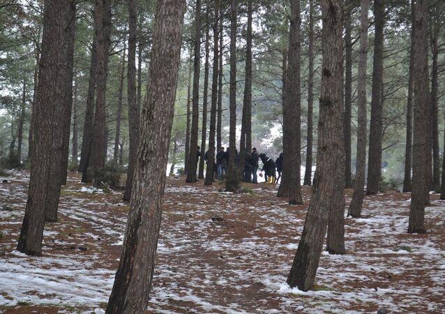 Edirne, Keşan, ormanlık alanda kesik kol bulundu