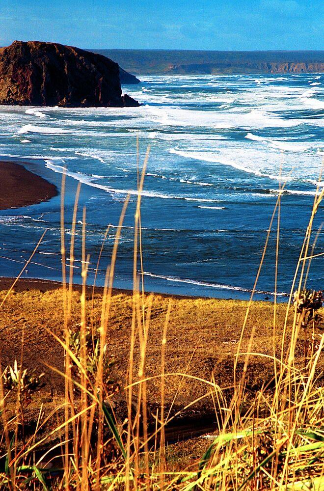 Sahalin ve Kuril Adaları