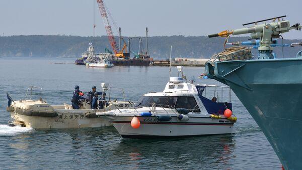 Japonya - balina avı - Sputnik Türkiye