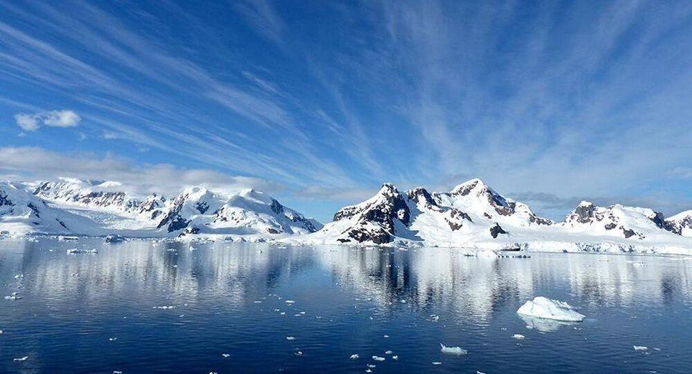 Kanada'da buzulların altından 40 bin yıllık bitki fosilleri çıktı