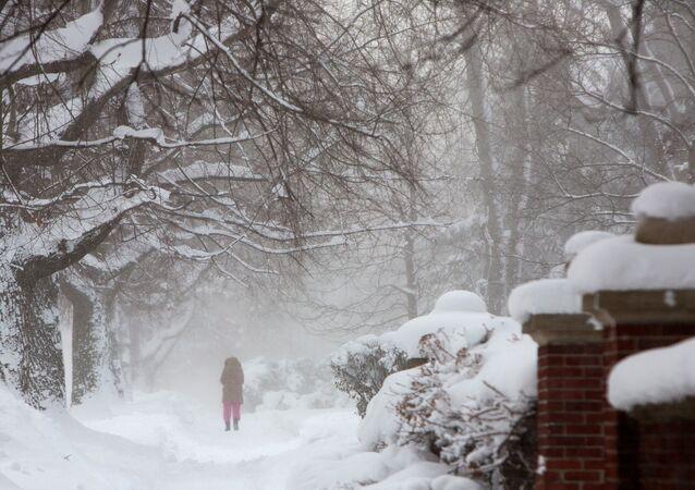 ABD'de kutup soğukları - kar