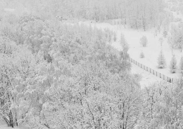 Rusya- kış