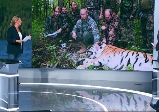 Rusya Devlet Başkanı Vladimir Putin'in kaplan avladığının iddia edildiği bir haber yapan France 2 televizyonu