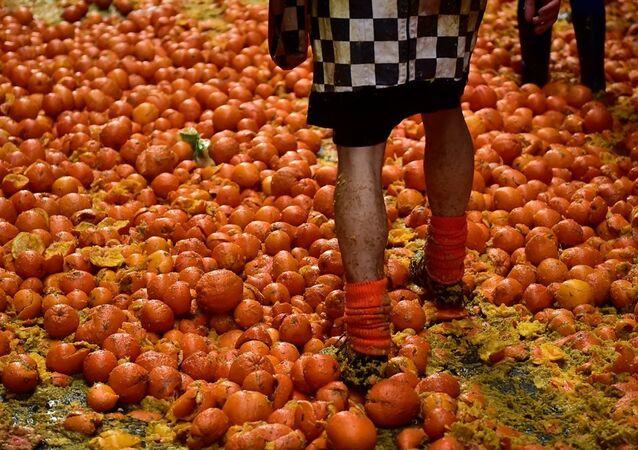 Portakal Savaşları