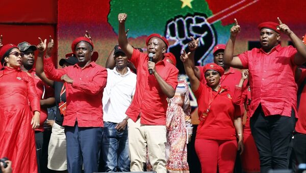 Güney Afirka Ekonomik Özgürlük Savaşçıları (Economic Freedom Fighters-EFF) lideri Julius Malema - Sputnik Türkiye