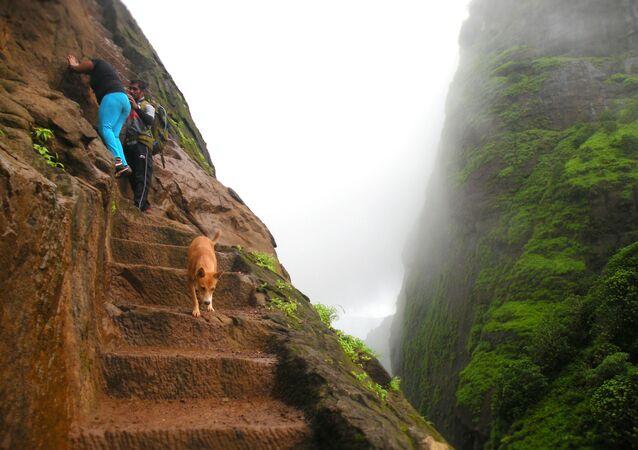 Dünyanın en korkutucu merdivenleri