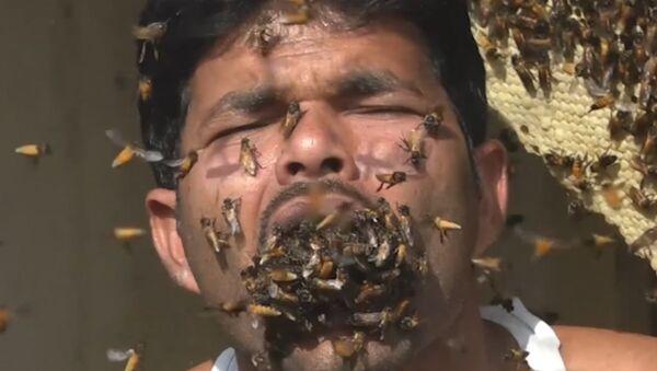 Hindistan'ın Batı Bengal eyaletinde yaşayan bal toplayıcısı Suk Mahammad Dalal'in ağzını canlı arılarla doldurduğu belirtildi. - Sputnik Türkiye