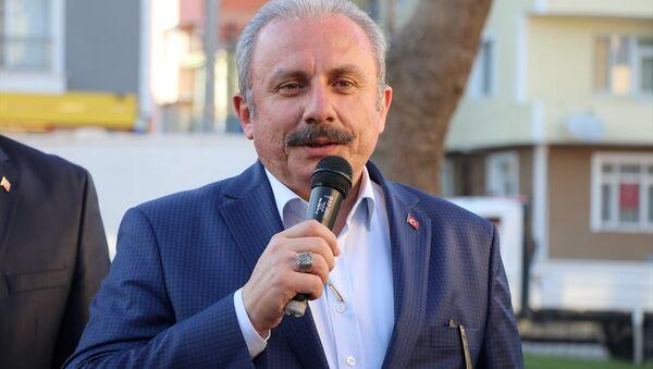 TBMM Başkanı Mustafa Şentop - Sputnik Türkiye
