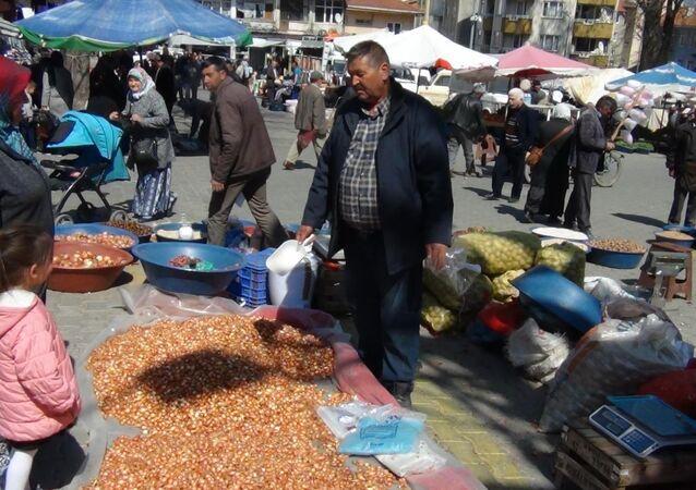 Tohumluk kuru soğan satıcısı