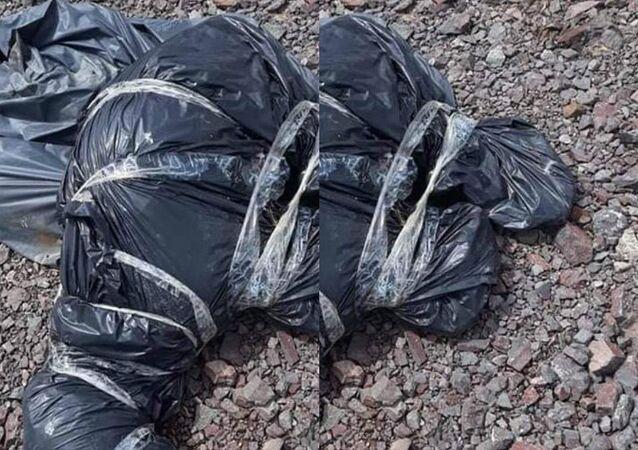 Ankara Çubuk'ta çöp torbalarına konulmuş onlarca sokak köpeği ölüsü bulundu