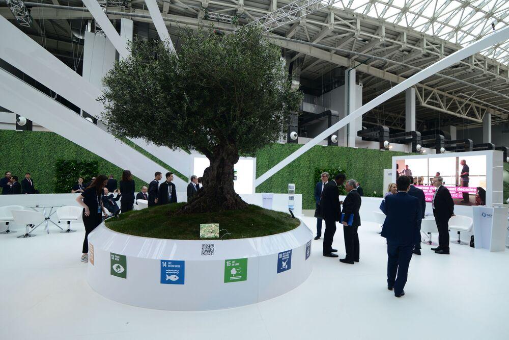 Atomexpo uluslararası forum, 2009'dan bu yana her yıl düzenli olarak yapılıyor.