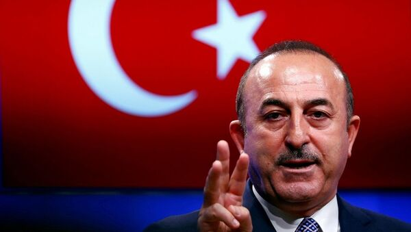 Mevlüt Çavuşoğlu - Sputnik Türkiye