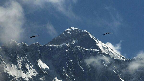 Птицы над горой Эверест  - Sputnik Türkiye