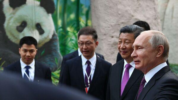 Vladimir Putin- Şi Cinping- Panda - Sputnik Türkiye