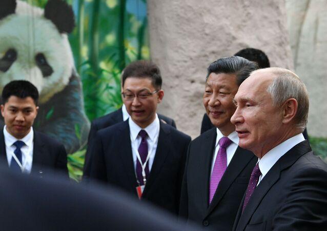 Vladimir Putin- Şi Cinping- Panda