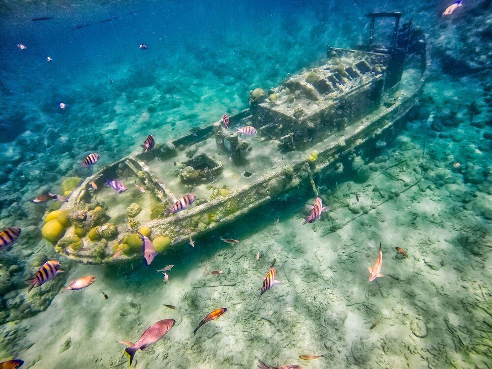 Karayip Denizi'nde batmış gemi.