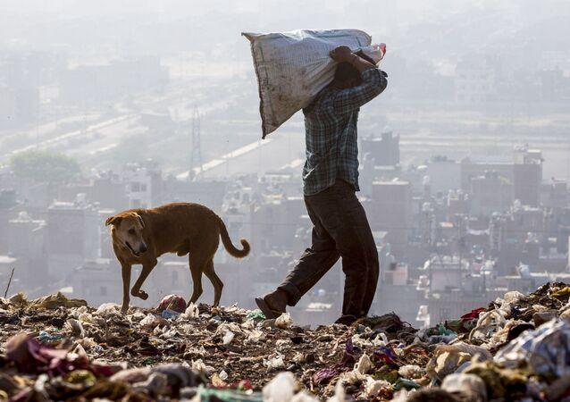 Hindistan'ın başkenti Yeni Delhi'de havadaki zehirli partikül oranı, Dünya Sağlık Örgütü'nün (WHO) belirlediği üst sınır olan 25 mikrogramın 30 kat fazlası olan 750 mikrograma ulaşmış durumda.  Tehlikeli ince toz zerrelerinin kronik bronşit, akciğer kanseri ve kalp hastalıklarına yol açtığına dikkat çekiliyor.