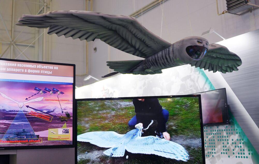'ARMY-2019 Forumu'nda tanıtılan keşif amaçlı kuş şeklindeki insansız hava aracı (İHA).