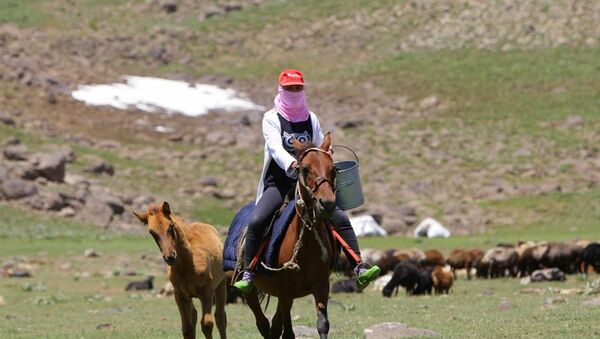 Berivan ve çobanların 3 bin rakımlı yaylada 180 günlük zorlu mesaisi - Sputnik Türkiye