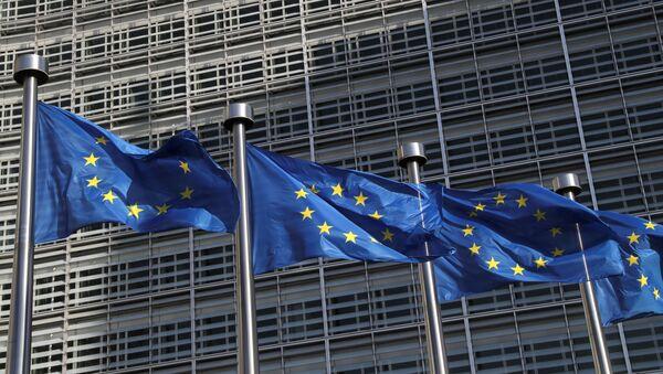 Avrupa Komisyonu'nda Avrupa Birliği (AB) bayrakları - Sputnik Türkiye
