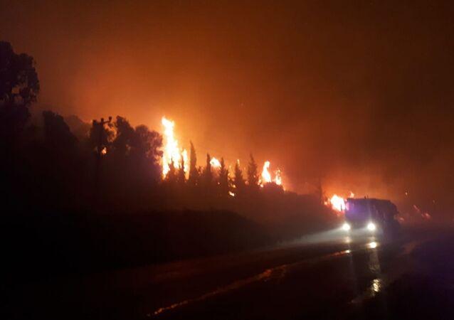 İzmir'in Menderes ilçesinde otluk alanda çıkan yangına müdahale ediliyor