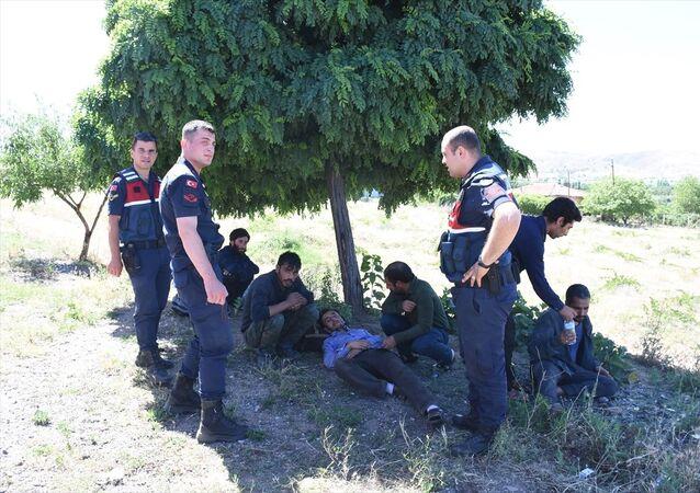 Afgan göçmenleri İstanbul'a geldik diyerek ormana bıraktılar
