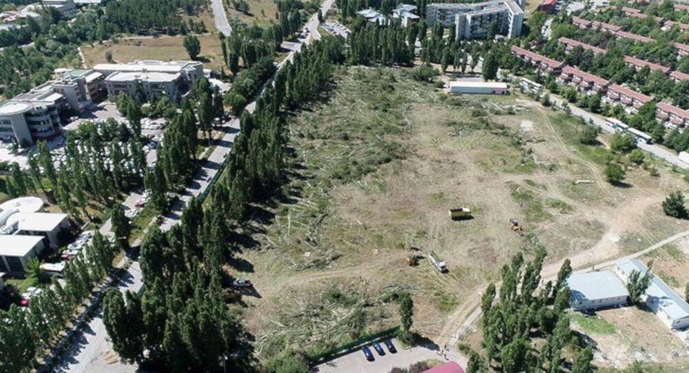 ODTÜ'deki ağaç kesimi havadan görüntülendi