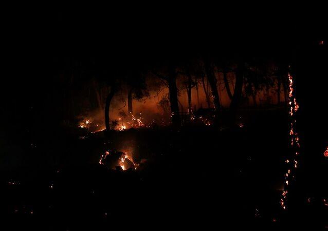 Muğla'daki orman yangınında 34 ev tahliye edildi