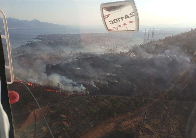 İzmir'in Bayraklı ilçesi Cengizhan Mahallesi'ndeki ağaçladırma alanında çıkan yangın, yerleşim alanına sıçramadan Orman Bölge Müdürlüğü ekiplerince kontrol altına alındı