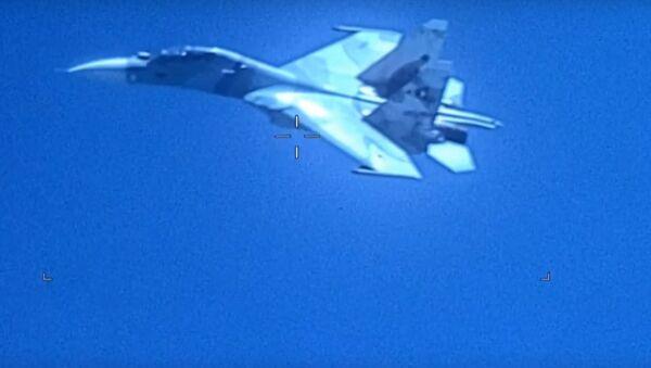 Venezüella'ya ait Su-30 uçağı - Sputnik Türkiye