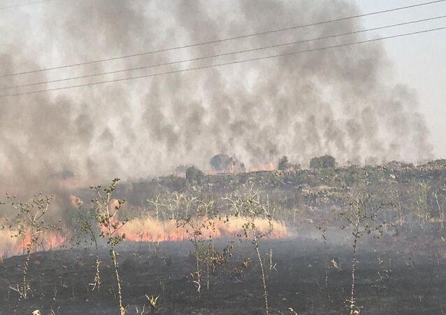 Manastır zeytinliklerinden sonra bu kez de Süryanilerin üzüm bağlarında yangın