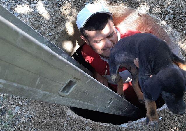 Adana'nın Tufanbeyli ilçesinde, rögara düşen köpek yavrusu çocukların dikkati sayesinde kurtarıldı.