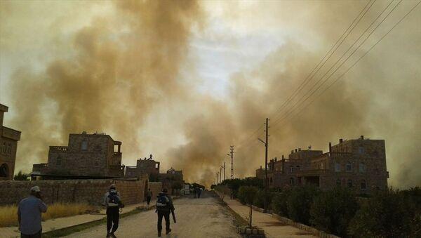 Mardin'in Nusaybin ilçesinde bulunan Bagok Dağı'nın 6 köyünün sakinleri yangının yaklaşması karşısında tahliye hazırlığına başladı. - Sputnik Türkiye