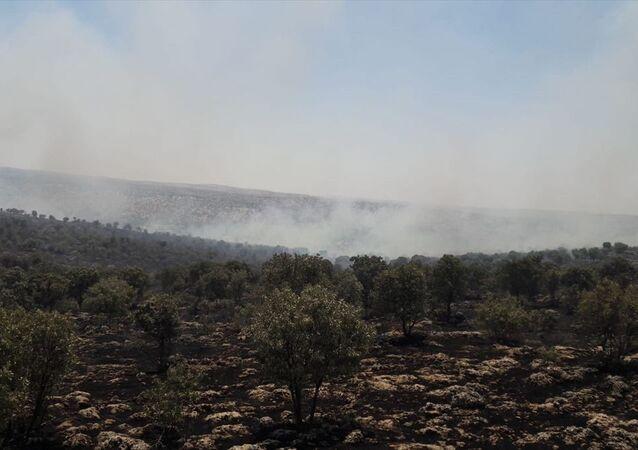 Mardin'in Midyat ve Nusaybin ilçeleri arasındaki ormanlık alanda çıkan yangın kontrol altına alındı. Yangında yaklaşık 200 hektarlık tarım ve orman alanı zarar gördü.