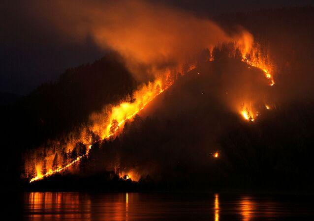Rusya'nın Sibirya bölgesinde orman yangınları