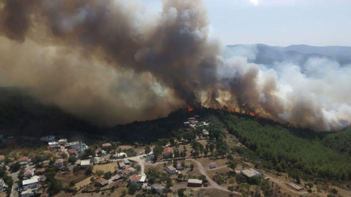 Bodrum ve Milas'ta orman yangını: Alevler köylere ulaştı, evlerini terk  ettiler - Sputnik Türkiye