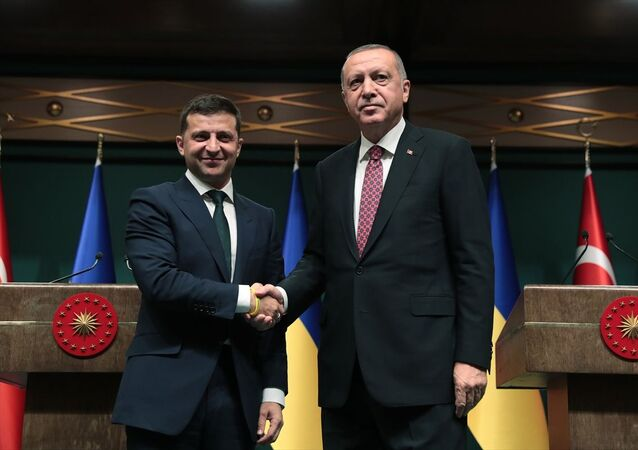 Türkiye Cumhurbaşkanı Recep Tayyip Erdoğan ve Ukrayna Devlet Başkanı Vladimir Zelenskiy