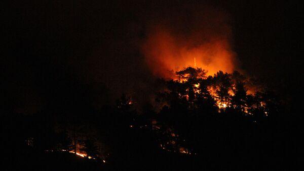 Eskişehir'deki orman yangınını söndürme çalışmaları devam ediyor  - Sputnik Türkiye