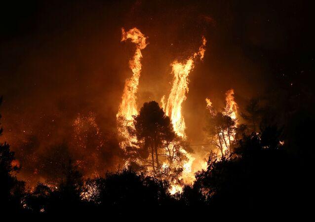 Yunanistan'ın Eyvia Yarımadası'nda (Eğriboz) Agriliça bölgesinde iki gün önce çıkan yangın hâlâ kontrol altına alınamadı.