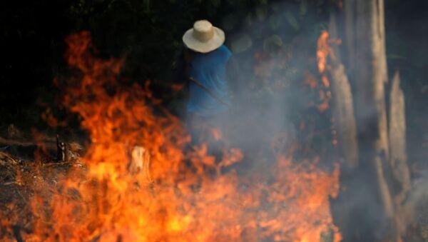 Brezilya'da kasıtlı yangın çıkarılan Amazon ormanları, kerestecilik, çiftçilik ve madencilikle yağmalanıyor. - Sputnik Türkiye