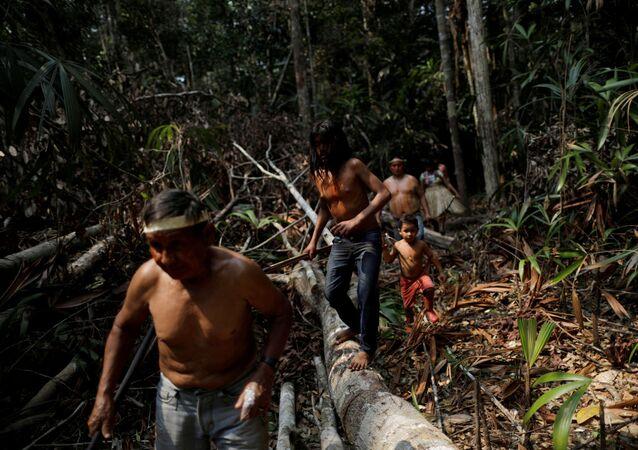 3 milyon bitki ve hayvan türüne ev sahipliği yapan Amazon ormanlarını korumaya çalışan yerliler